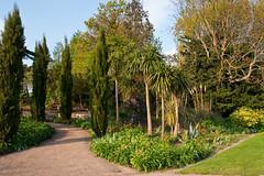 Queen Mary's Gardens (jens.greitemann) Tags: park england london unitedkingdom urlaub baum regentspark frühling frhling london2009