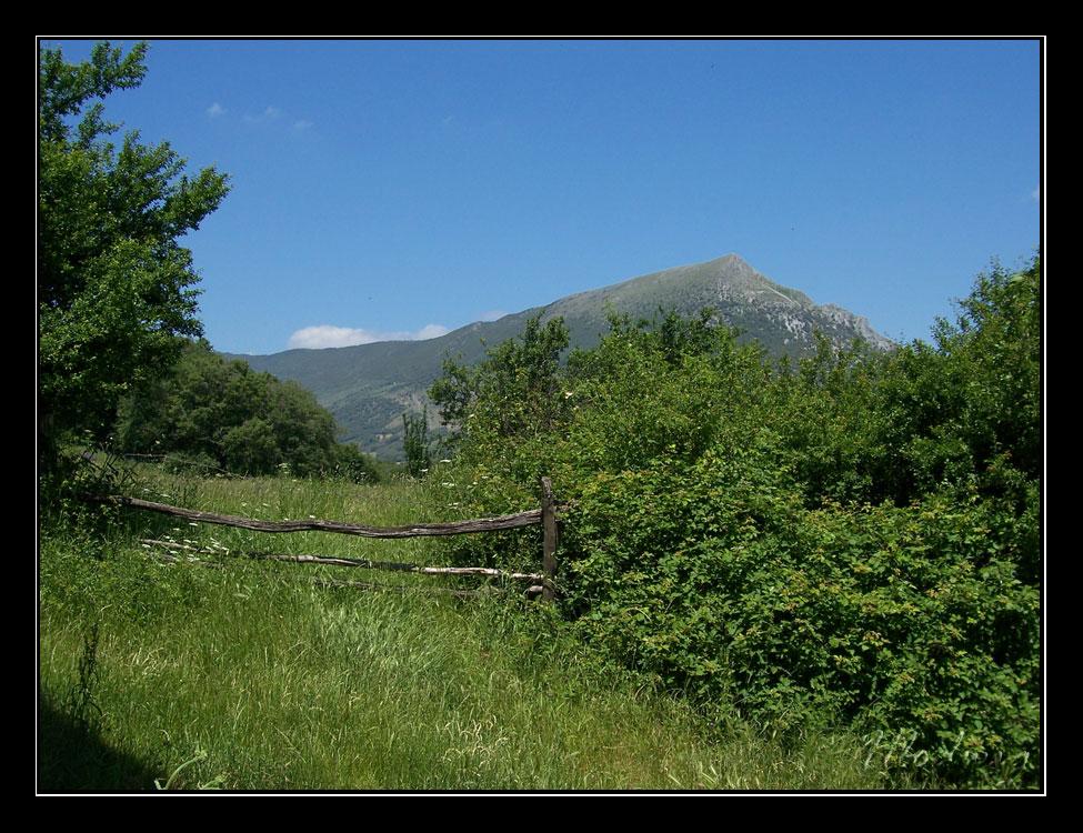 Txurregi llegando a Saldise (Navarra)