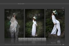 harvey (Copo ArtDesign - Diseño Web) Tags: flash websites actionscript