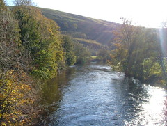 LOOKING DOON, the border esk. autumn (the water watcher 05.) Tags: tree trees wood woods treelined leaf leafs leaves riverbank green hill hills river rivers water stream streams rural countryside view landscape fujia607 riveresk esk borderesk potholm langholm dumfriesandgalloway scotland autumn autumncolours thefall rnbdumfriesandgallowayesk thelangholmwalks dumfriesshire brown waters autumntrees views landscapes light shadow lightandshadow lightandshadows shadows sunbeams sunrays sunlight ruralscene countryscene nature potholmvalley valley autumnal waterscape riverscape doon borders greysky sky skies blue dumfriesshirehills