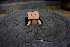 A ghost from an abandoned well~~ (darkmoming) Tags: figure danbo canonefs1785mmf456isusm revoltech jfigure danboard