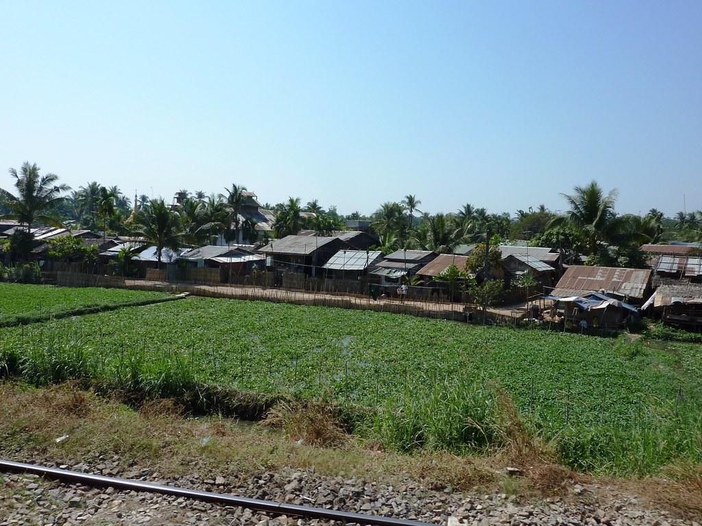 Yangon 10 (91)