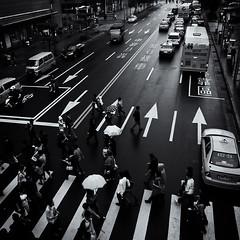 Crossing (h329) Tags: street bw taipei ricoh  grd grdii