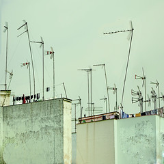 urban forestation (pannaphotos) Tags: sevilla spain roofs antennas receivers forestation liketrees pannaphotos
