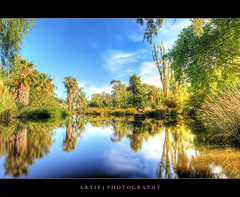 Reflection of Me (Tagged!) :: HDR (:: Artie | Photography ::) Tags: trees sculpture plants reflection nature water photoshop canon flamingoes peace cs2 australia wideangle serenity handheld newsouthwales grasses bliss 1020mm botanicalgarden hdr artie waggawagga mirroredreflection 3xp sigmalens photomatix tonemapping tonemap vegetations 400d rebelxti flamingosculpture