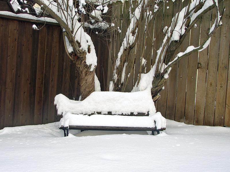 011109 Snowy Day_08