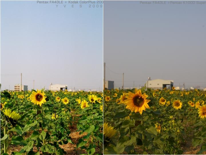 Kodak ColorPlus 200 測試
