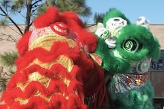 Red & Green Lion (Tygriss) Tags: chinesenewyear liondance yearoftheox houstonshaolin