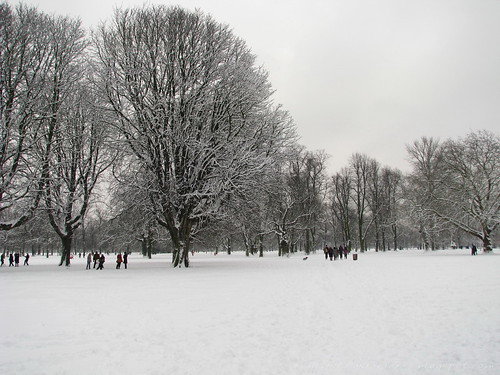 Snow in Kensington Gardens