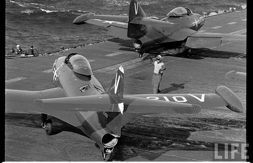 Warbird picture - Grumman F9F Panther