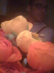 photo.jpg ({Guerrilla Futures   Jason Tester}) Tags: flowers flower lowlight ranunculus peter nightcamera iphonemacro sanfrancciso