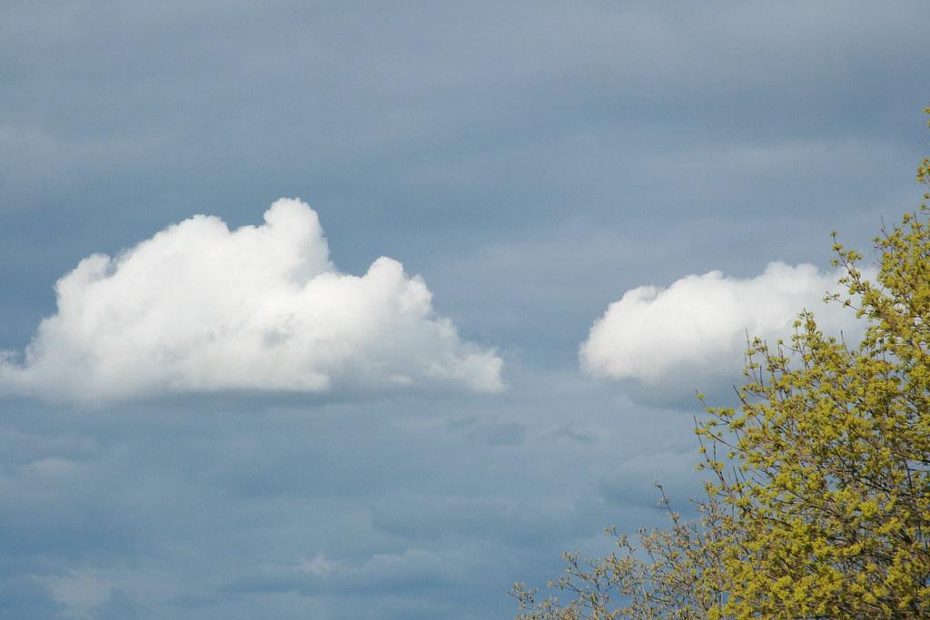 Earth & sky.