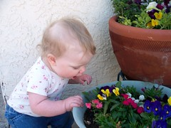 Stopping to smell the flowers in her own way (Ludeman99) Tags: eowynlouisebitner