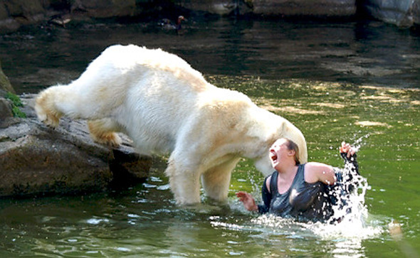 Woman is mauled. Bear is eating...