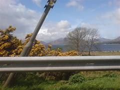 DSC00484 (Ray McC) Tags: camping trees mountains west water way walking scotland rocks cattle sheep hills highland waterfalls loch westhighlandway hillwalking tyndrum lomand glenco lochlomand rowerdennan