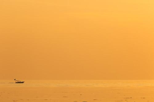 Mandarin skies
