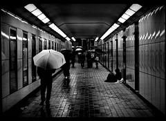 rainy night (Noisy Paradise) Tags: street city longexposure light bw monochrome rain japan night tokyo blackwhite     japanatnight   sigmadp2 noisyparadise