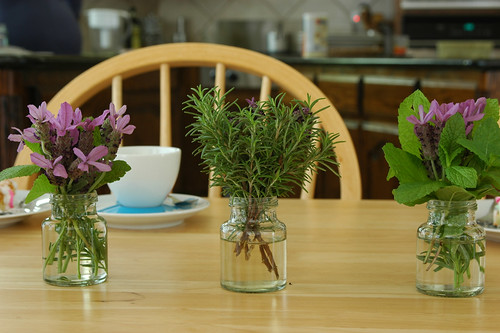 Rosemary & Spanish Lavender Flowers