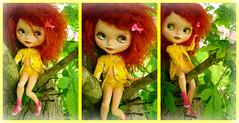 Treeclimbin' Lillybit