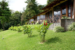 Arenal Vista Lodge.