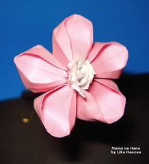 Momo no Hana Origami