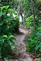 baudchon-baluchon-costa-rica-cahuita-33