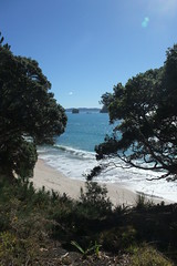 hiking towards Cathedral Cove