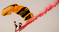 The U.S. Army Golden Knights