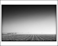 Minimal Monochrome Winter landscape (Joel Tjintjelaar) Tags: holland thenetherlands winterlandscape ecm a27 9c ysplixblack tjintjelaar monochromaticdisorder monotonehallucination canlessbemore ecmrecordcover joeltjintjelaar minimalmonochromewinterlandscape