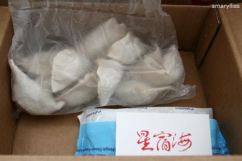 台中 星宿海 水餃試吃