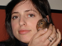 Steph and Prudie (bleudreams) Tags: hamsters smallanimals