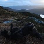 Dougal a' Roladh thumbnail