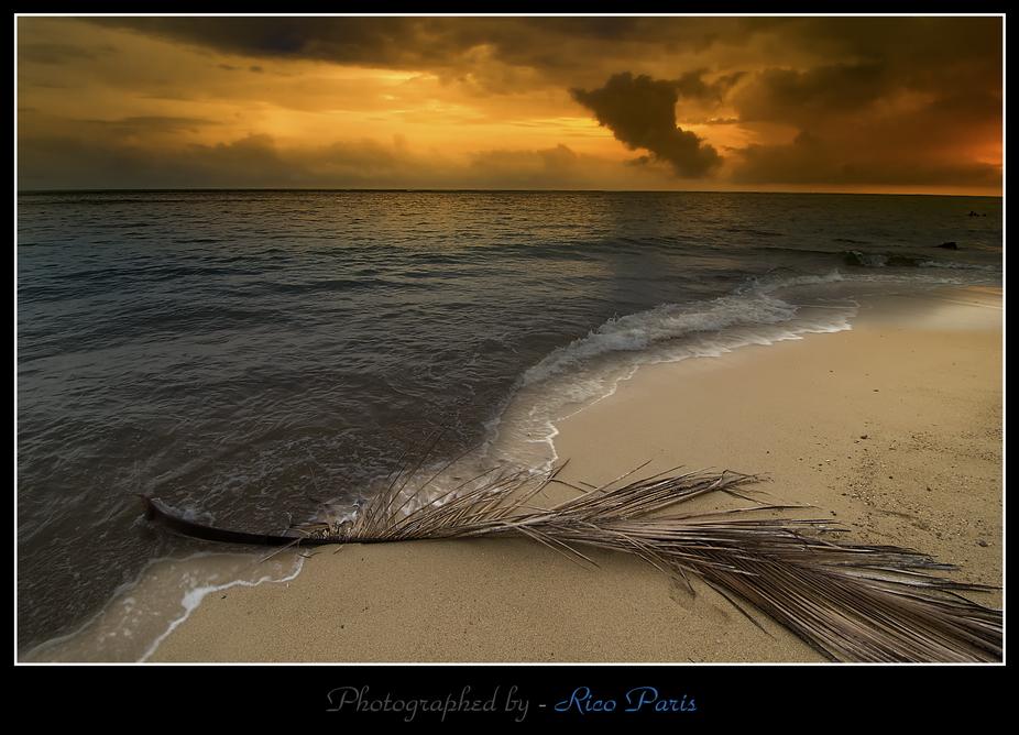 Alone on the Beach!!!