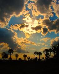 Nubes en llamas (soy sissi +1000000 views Thanks!!!!) Tags: sunset sky beauty clouds cu cielo nuvens beleza 1001nights nubles supershot anawesomeshot impressedbeauty theunforgettablepictures overtheexcellence mindigtopponalwaysontop niceshotmosaic6 mygearandmepremium mygearandmebronze