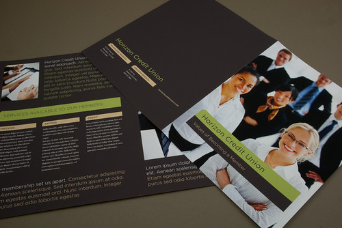 Credit Union Brochure  by inkdphotos