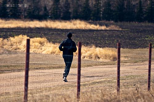 Jogging through the University farm as a midday break