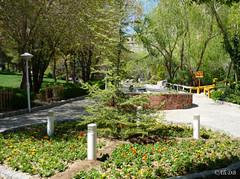 اصفهان - پارك كوهستاني صفه 1 (~~Ali~~) Tags: nature spring iran mount esfahan isfahan كوه پارك sofeh صفه mountsofe