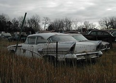 Junk Yard of Cars in Nebraska (pmadsidney) Tags: rot ford buick weeds rust jeep mercury parts plymouth special international lincoln fields dodge pontiac studebaker kaiser mustang nash impala galaxie oldsmobile skylark rustycars chrylser junkcars
