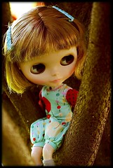 Girl in a tree!