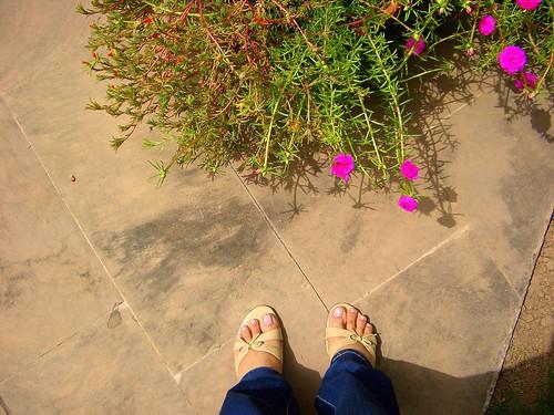 home-home feet