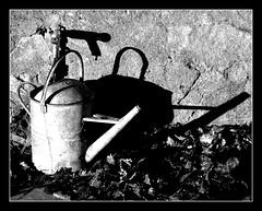 Last drop (philwirks) Tags: autumn public water garden rust shadows picnik myfavs prismatic luminosity philrichards cooliris yourbestphotography show08 unlimitedphotos