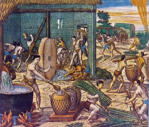 theodore de bry-esclavos en plantación de azúcar