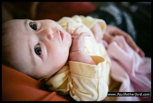 baby girl photography | michigan baby photographer by paulretherford