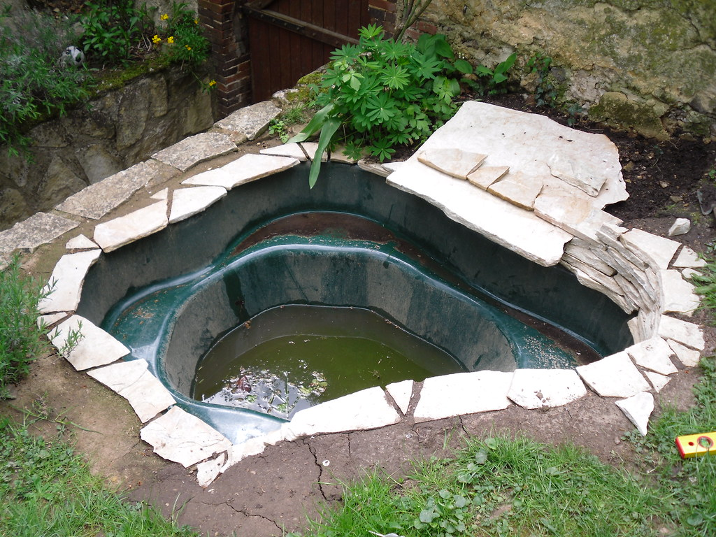 mon p'tit bassin dans mon p'tit jardin - Page 2 4573679027_133e9497b5_b