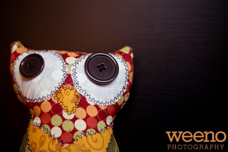 Tuks Owl (5 of 5)