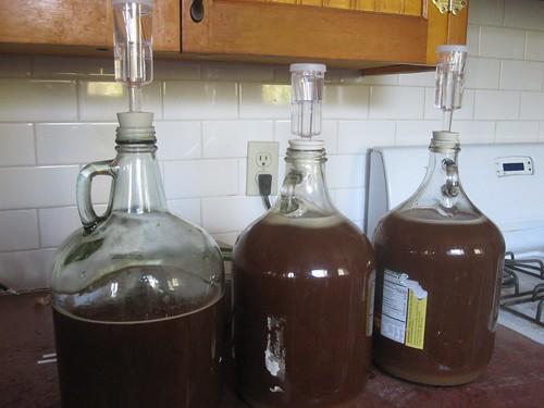 brewing maibock - 5