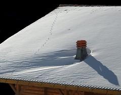 Comignolo (cienne45) Tags: friends italy snow liguria cienne45 carlonatale genoa snowfall natale aplusphoto aplusphotoex aphotoex