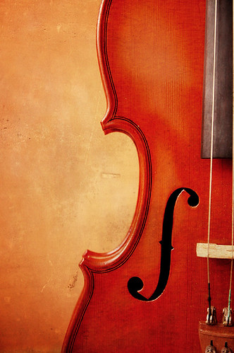 bright beautiful violin