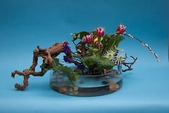 Linda's Ikebana 28 jan 09 (l1nda1) Tags: flower ikebana flowerarrangement floralart japaneseflowerarrangement