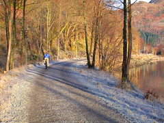 Loch Lubnaig, December 2004 (Hugh Spicer / UIsdean Spicer) Tags: winter 2004 cycling scotland december telegraphpole callander strathyre nationalcyclenetwork oldrailway lochlubnaig beeching